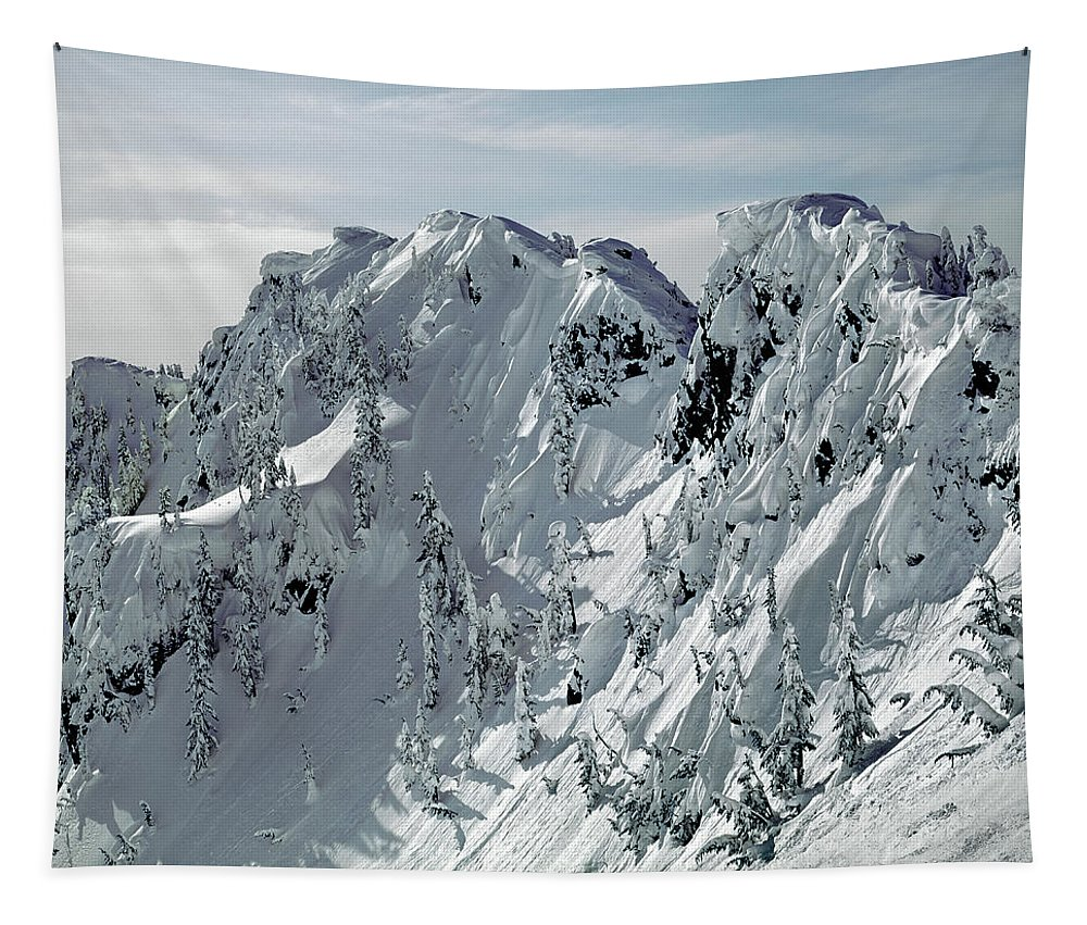 Cornices Tapestry featuring the photograph 104726 Cornices On Denny Mountain by Ed Cooper Photography