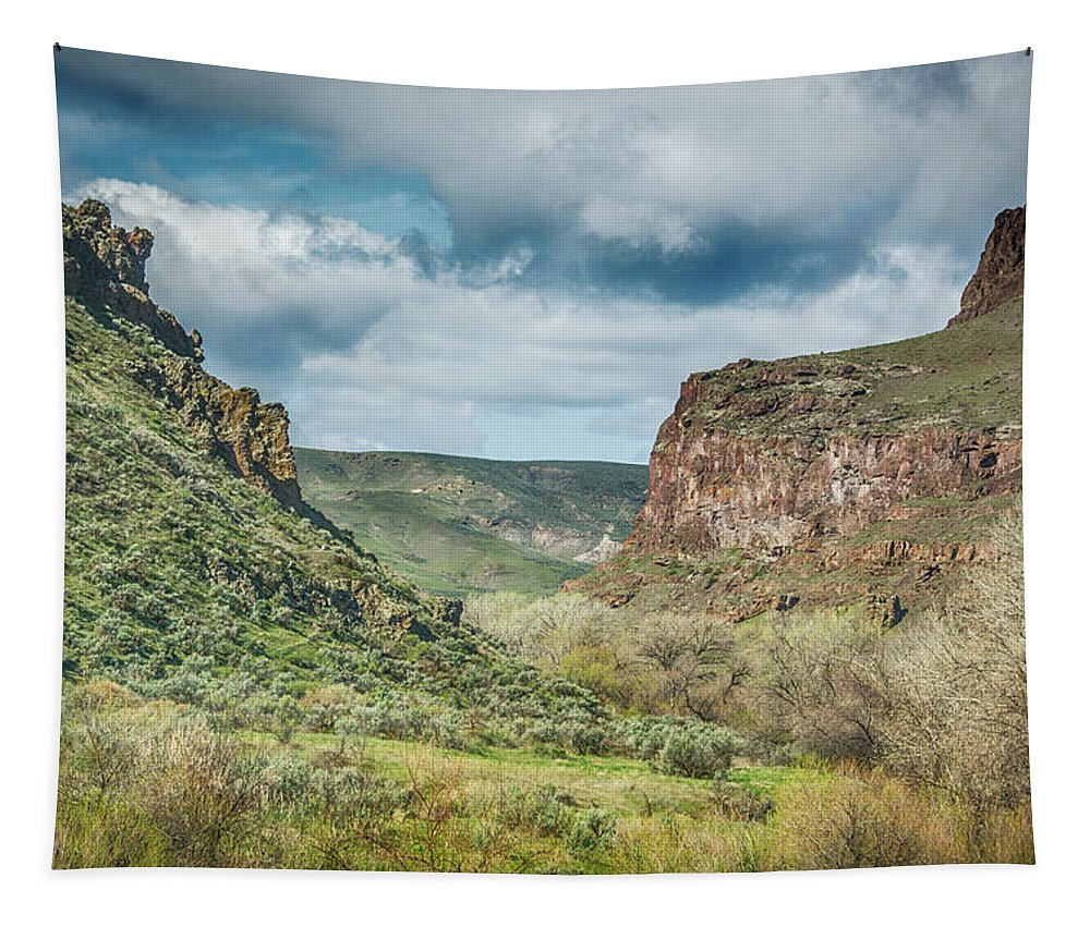 Oregon Tapestry featuring the photograph 10901 Owyhee Canyon by Pamela Williams