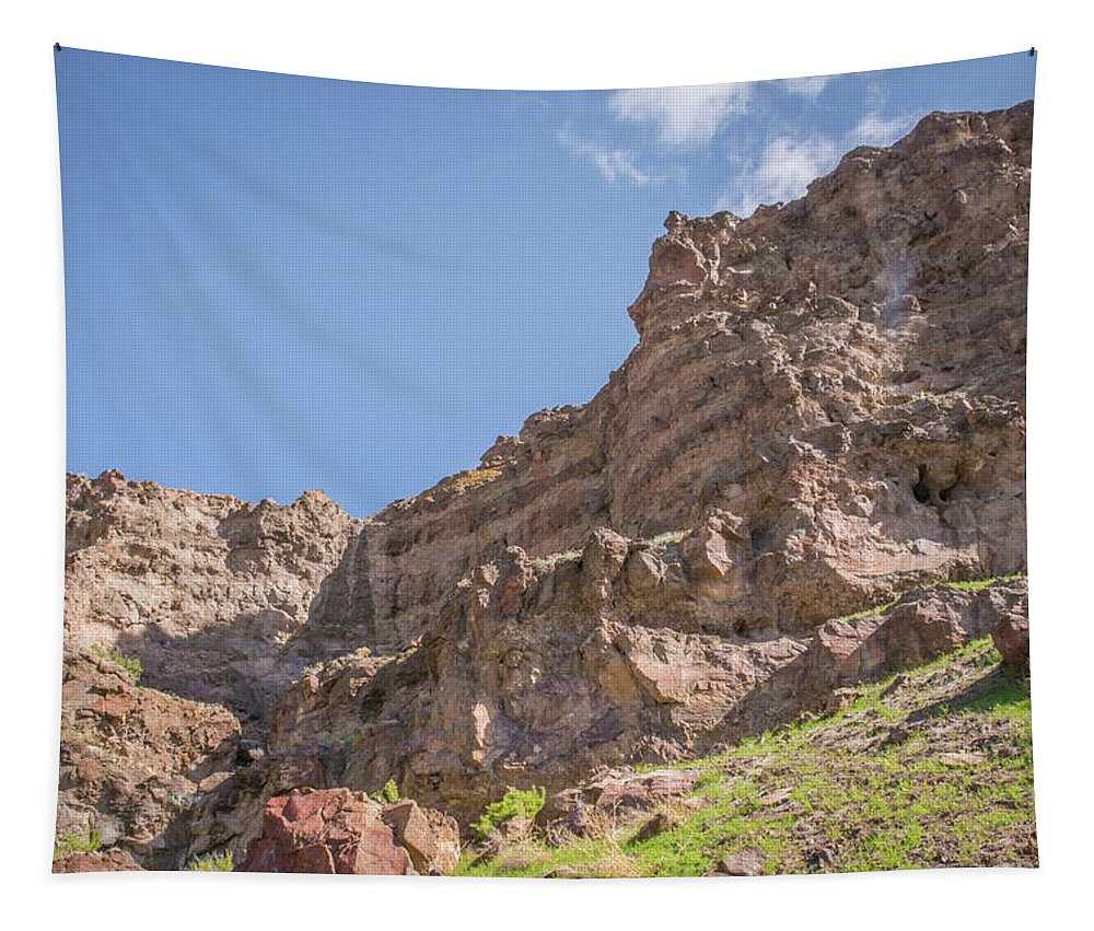Oregon Tapestry featuring the photograph 10902 Owyhee River Canyon by Pamela Williams