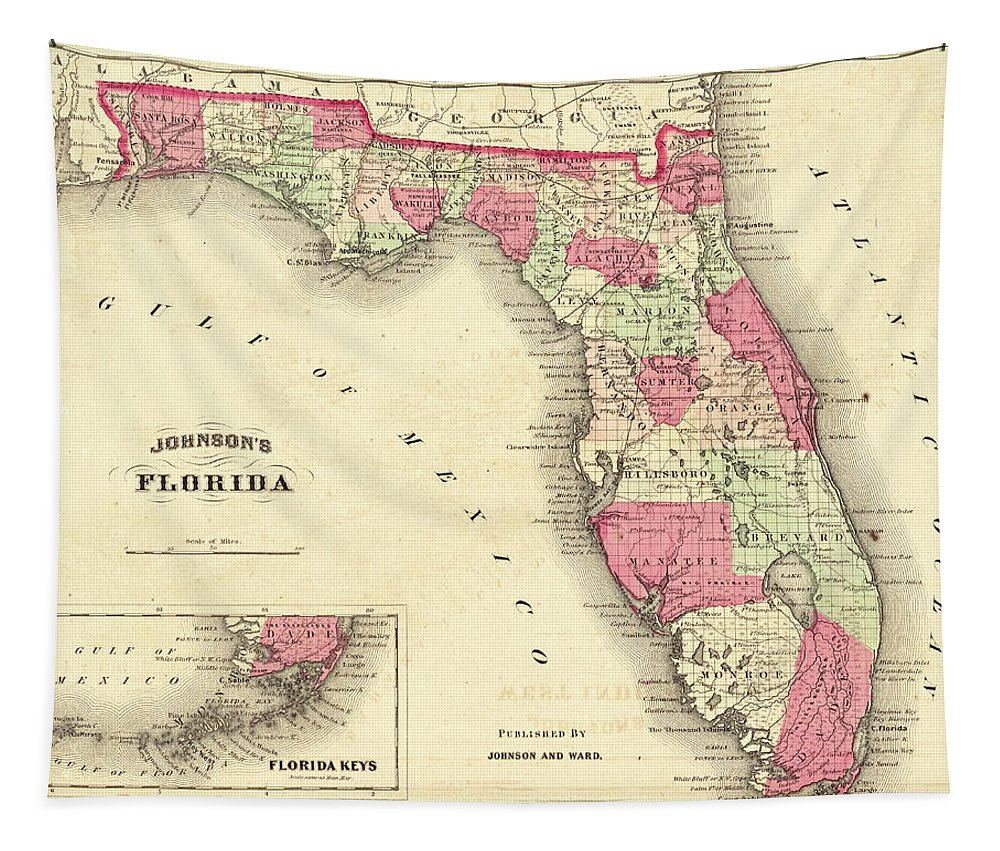 1864 Tapestry featuring the photograph 1864 Florida Map Color by Toby McGuire
