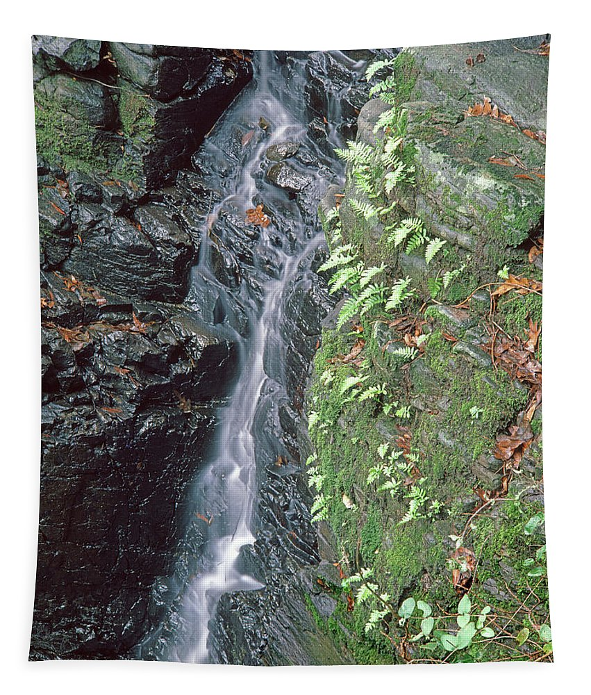 Diamond A Tapestry featuring the photograph 1b6353 Falls On Sonoma Mountain by Ed Cooper Photography