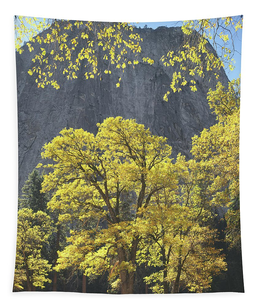 1m6610 Tapestry featuring the photograph 1m6610 Middle Cathedral Rock In Autumn by Ed Cooper Photography
