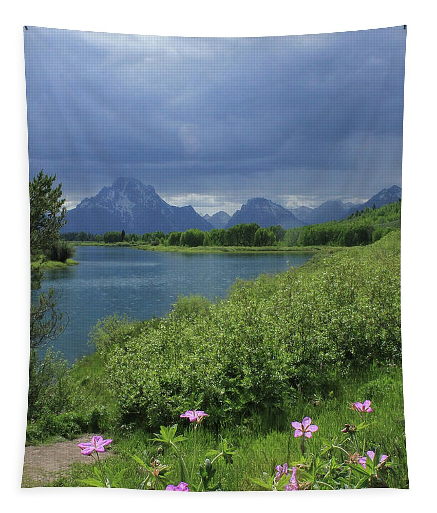 Mt. Moran Tapestry featuring the photograph 1m9236 Mt. Moran And Sticky Geranium by Ed Cooper Photography