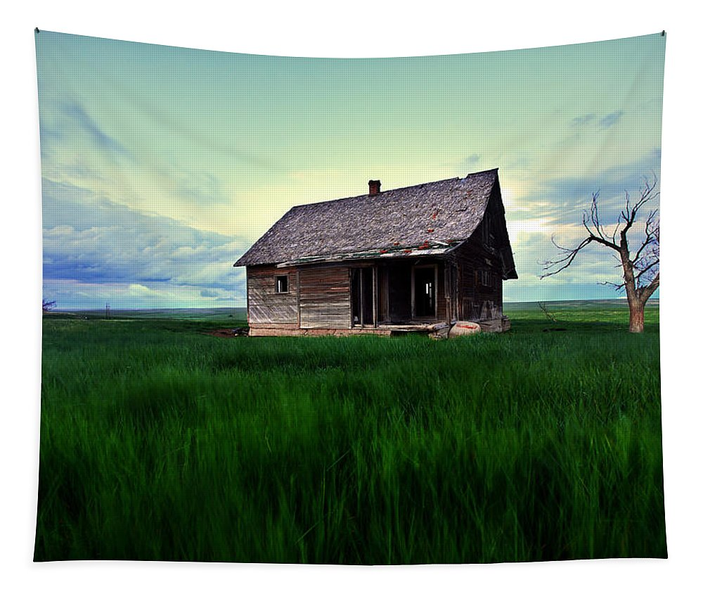 Abandoned Tapestry featuring the photograph Backyard Abandonment by Brian Gustafson