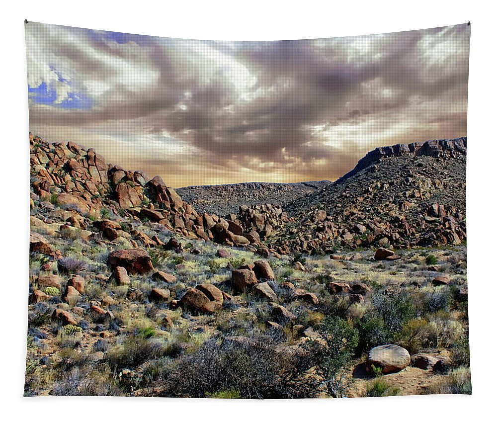 Adventure Tapestry featuring the photograph Big Bend National Park by Anthony Dezenzio