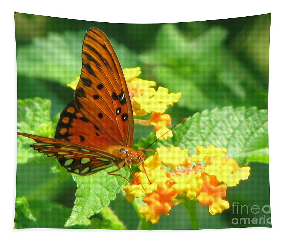 Butterfly Tapestry featuring the photograph Butterfly by Amanda Barcon