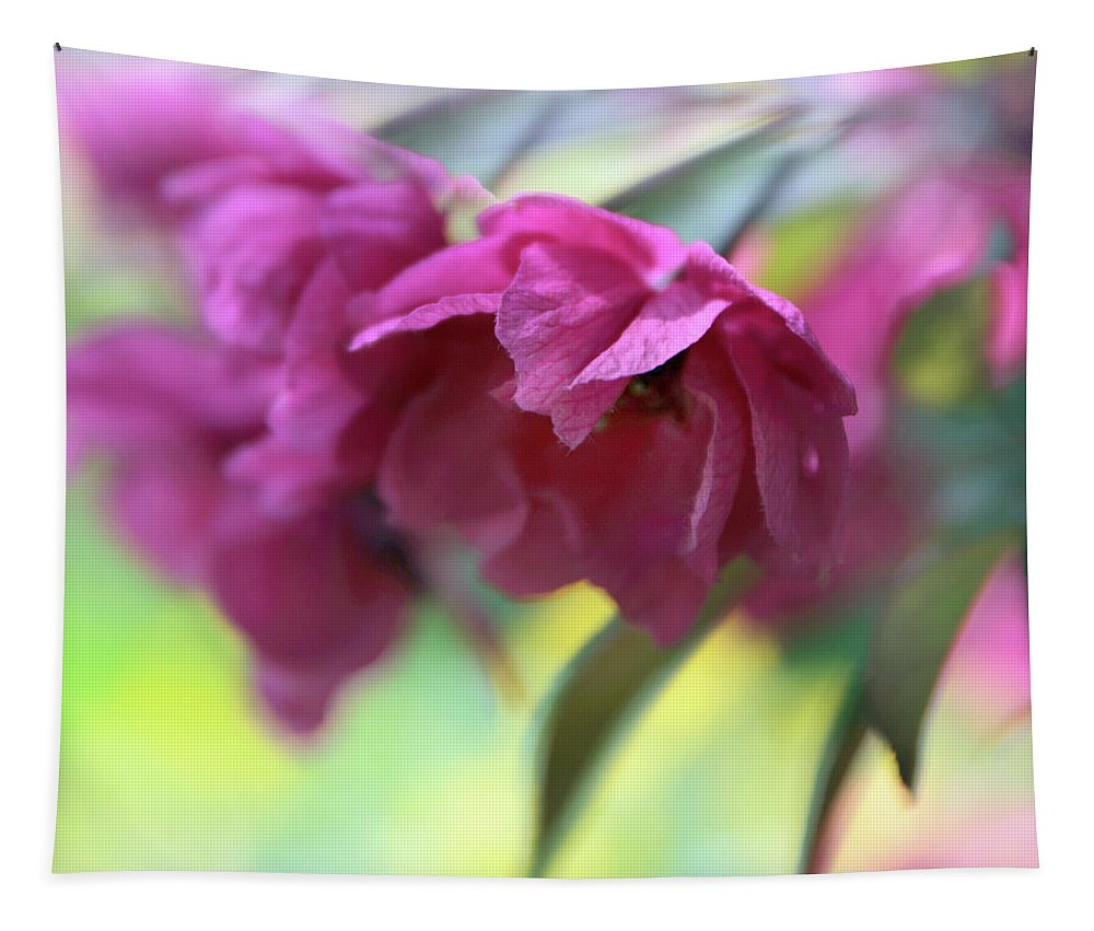 Flowers Tapestry featuring the photograph Crabapple Blossom by Jessica Jenney