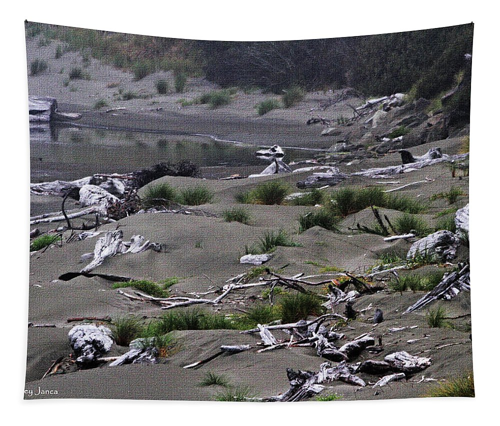 Driftwood On The Beach Tapestry featuring the photograph Driftwood On The Beach by Tom Janca