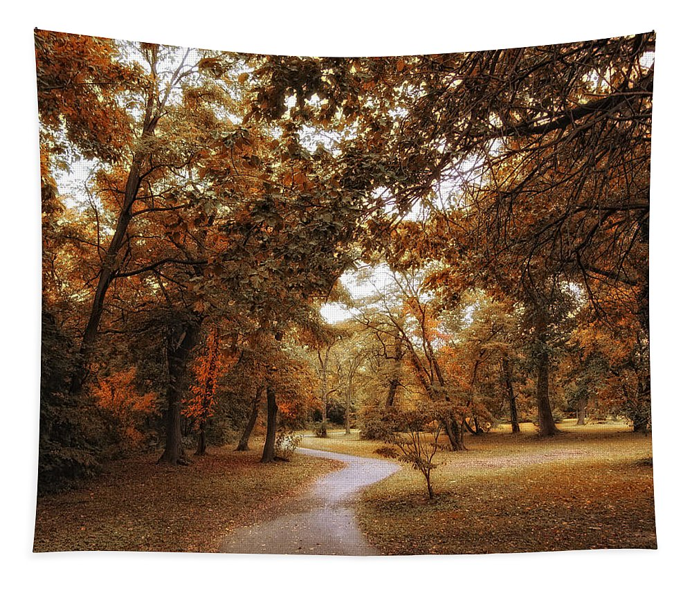 Autumn Tapestry featuring the photograph Golden Path by Jessica Jenney