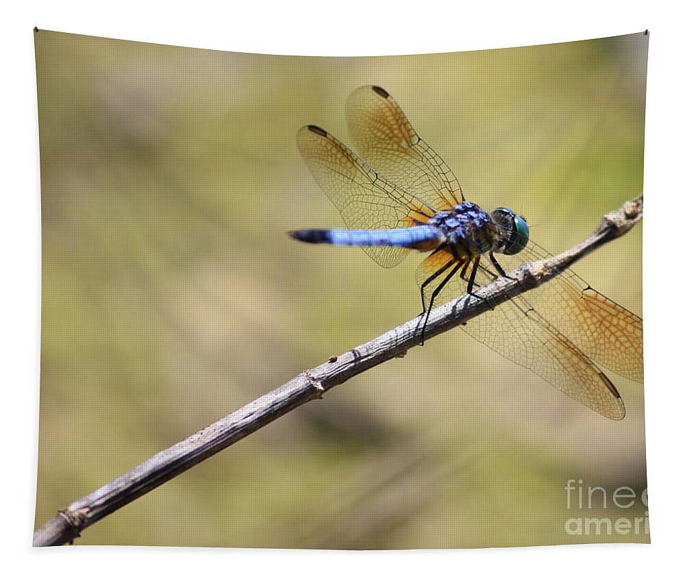 Dragonfly Tapestry featuring the photograph Golden Wings by Carol Groenen