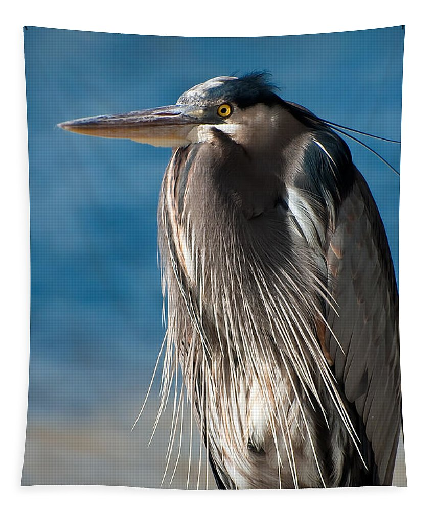 Bird Tapestry featuring the photograph Great Blue Heron by Rich Leighton