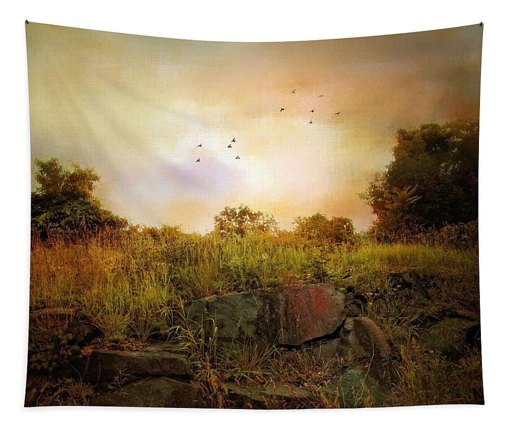 Nature Tapestry featuring the photograph Hilltop Meadow by Jessica Jenney