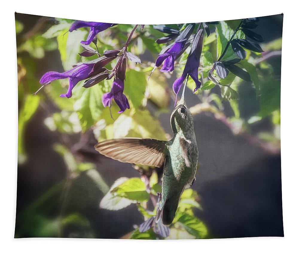 Hummingbird Tapestry featuring the photograph Hummingbird Heaven by Saija Lehtonen