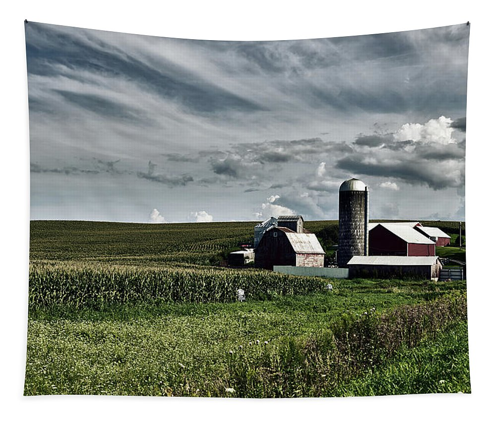 Iowa Tapestry featuring the photograph Iowa Farmstead by Mountain Dreams