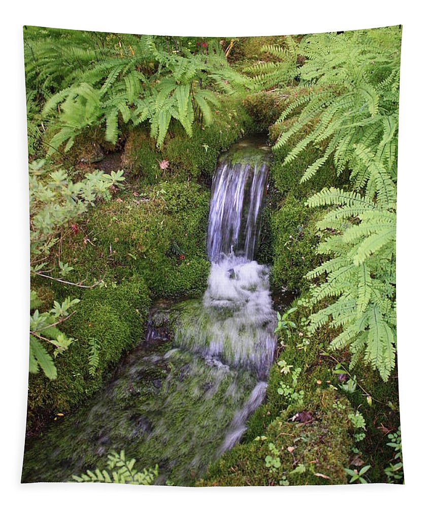 Waterfall Tapestry featuring the photograph Mossy Waterfall by Carol Groenen