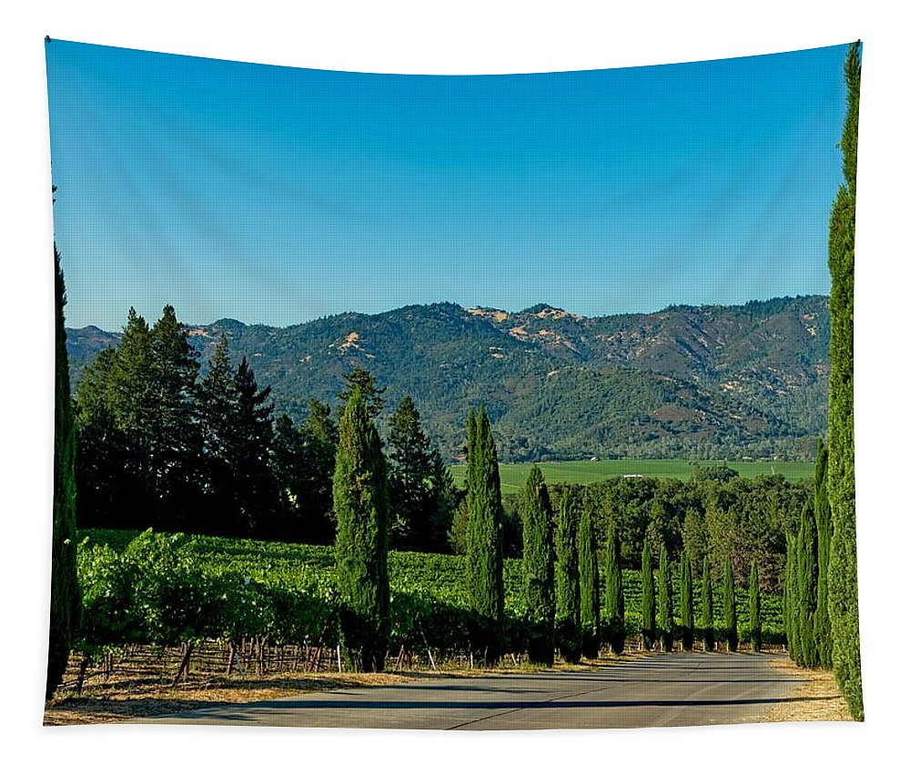 Napa Valley Tapestry featuring the photograph Napa Valley by Mountain Dreams