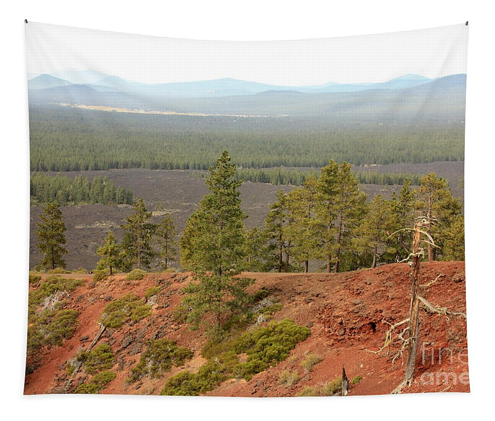 Oregon Tapestry featuring the photograph Oregon Landscape - View From Lava Butte by Carol Groenen