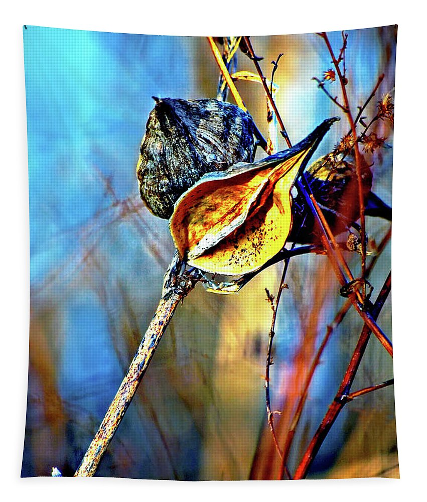 Milkweed Tapestry featuring the photograph Retirement  by Steve Harrington