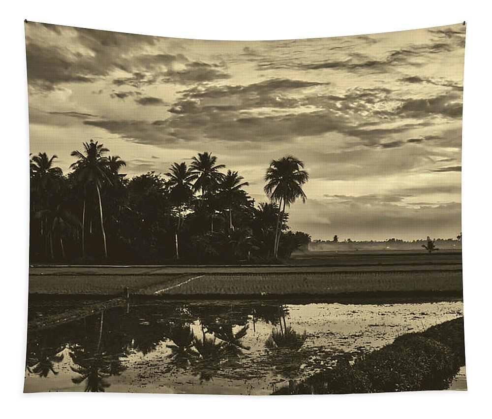 Indonesia Tapestry featuring the photograph Rice Field Sunrise - Indonesia by Pixabay