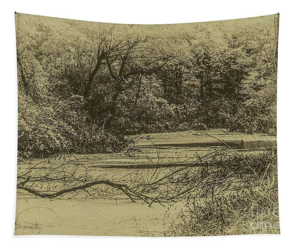 Swamp Tapestry featuring the photograph The Swamp by William Norton