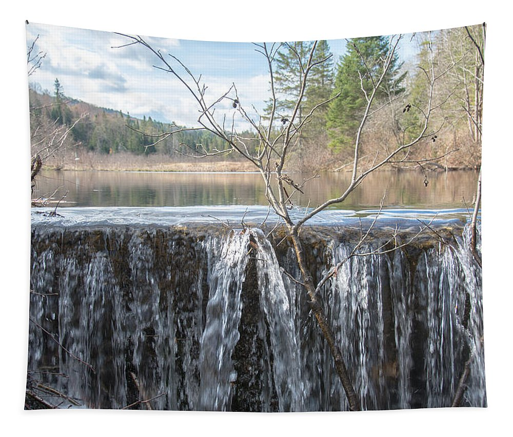 Swamp Tapestry featuring the photograph Vermont Swamp by Sherman Perry
