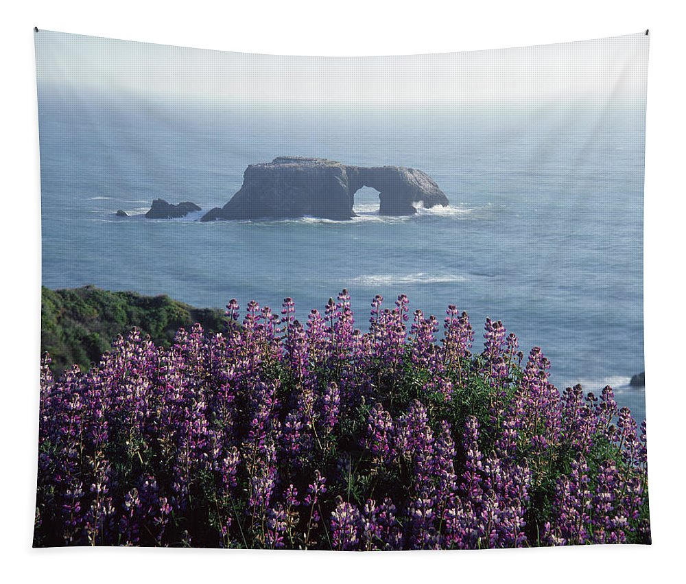 2a6101 Tapestry featuring the photograph 2a6101 Arched Rock And Blue Pod Lupine Ca by Ed Cooper Photography