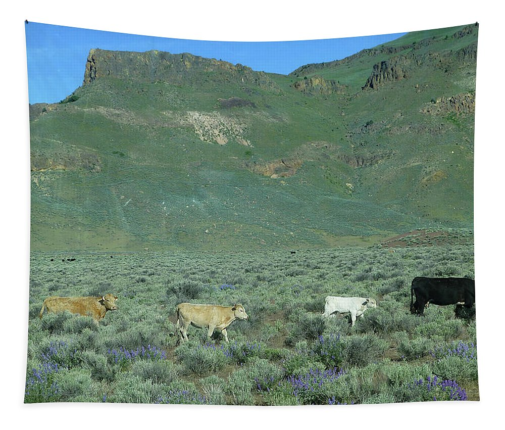 Cattle Tapestry featuring the photograph 2da5946-dc Cattle On Steens Mountain by Ed Cooper Photography