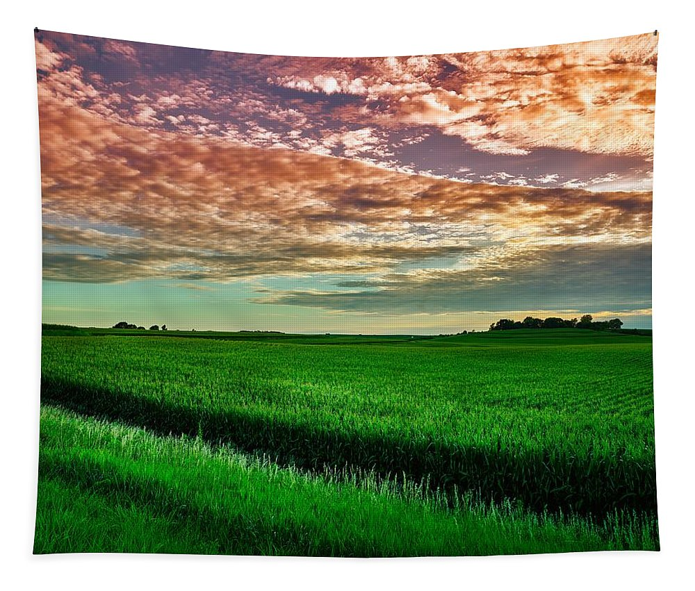 Iowa Tapestry featuring the photograph An Iowa Sunset by Mountain Dreams