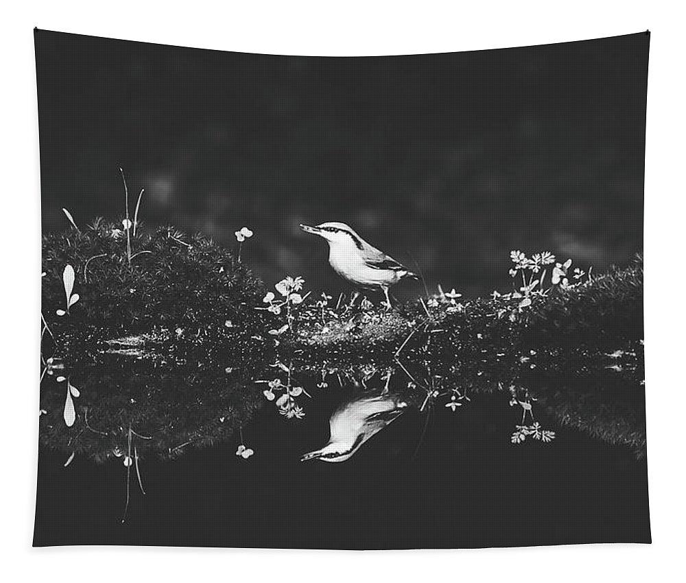 Bird Tapestry featuring the photograph Reflections by Pixabay