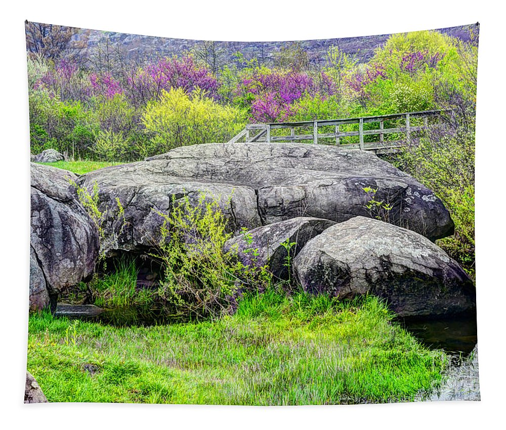 Spring Blooms Tapestry featuring the photograph Spring At Devils Den by Paul W Faust - Impressions of Light