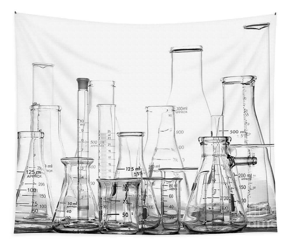Beakers Tapestry featuring the photograph Laboratory Equipment In Science Research Lab by Olivier Le Queinec