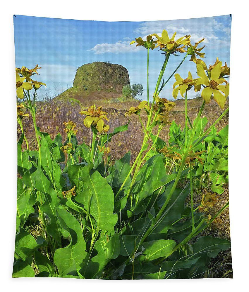 Hat Rock Tapestry featuring the photograph 3da5792-dc Arrowleaf Balsamroot Framing Hat Rock by Ed Cooper Photography