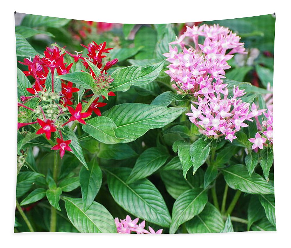 Flowers Tapestry featuring the photograph Flowers by Rob Hans