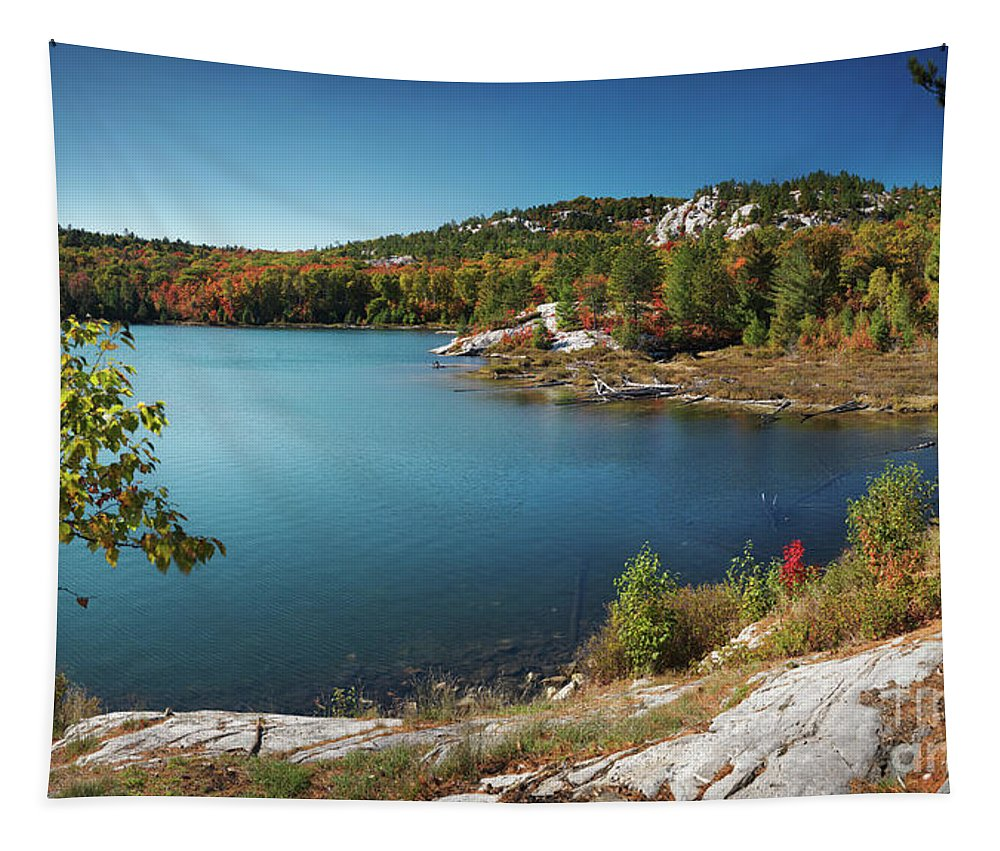 Lake Tapestry featuring the photograph Killarney Provincial Park In Fall by Oleksiy Maksymenko