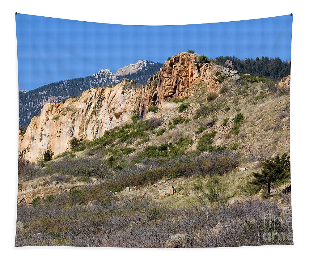 Pike National Forest Tapestry featuring the photograph Red Rock Canyon Open Space Park by Steve Krull