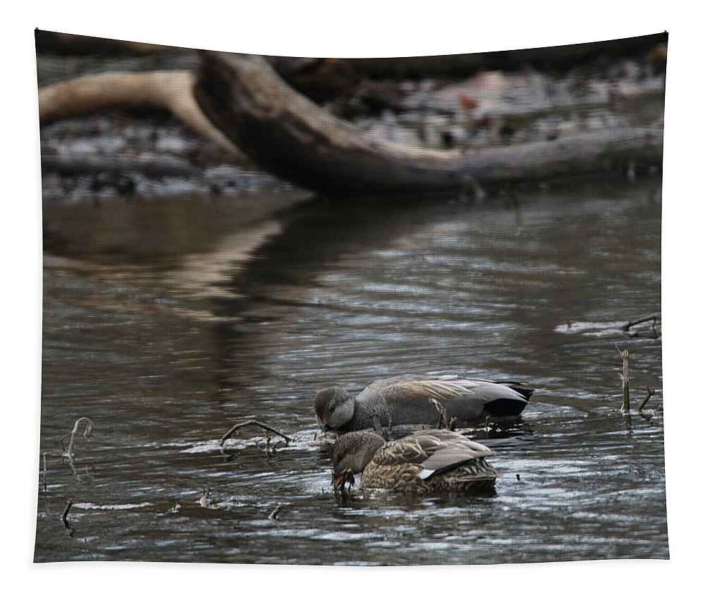 Ducks Tapestry featuring the photograph Waterfowl by Michael Munster