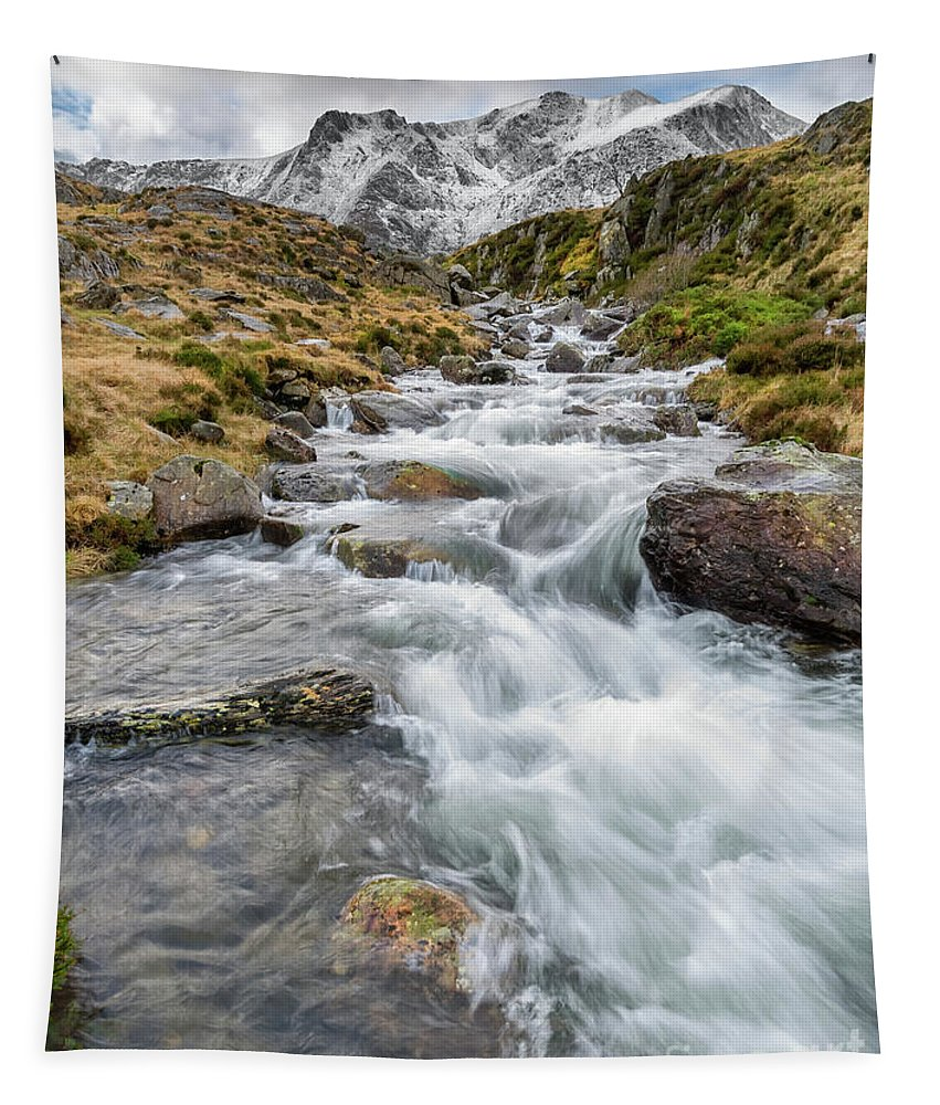 Snow Tapestry featuring the photograph Winter Stream by Adrian Evans