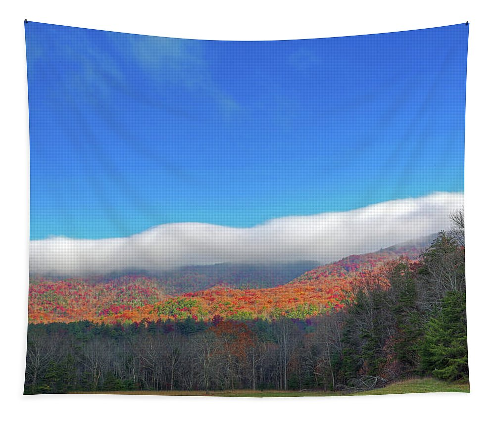 Great Smoky Mountains Tapestry featuring the photograph Great Smoky Mountains National Park by Michael Munster