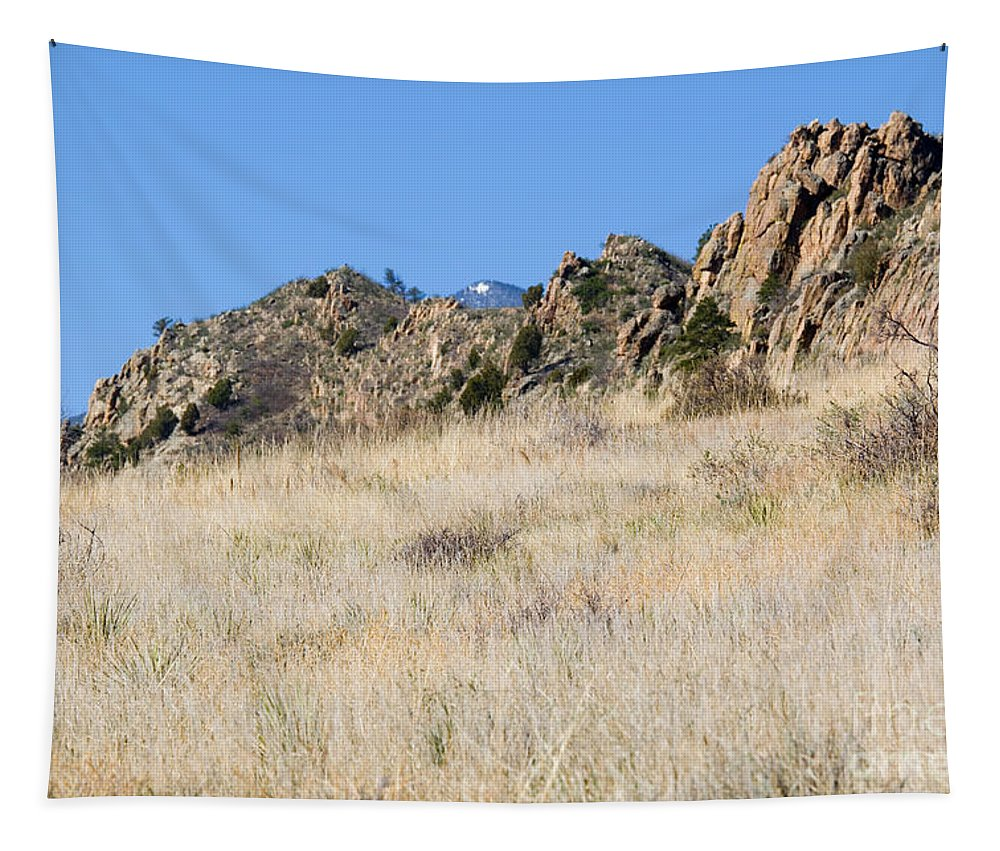 Red Rock Tapestry featuring the photograph Red Rock Canyon Open Space Park by Steve Krull