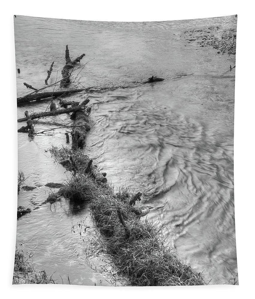 Ha Ha Tonka Tapestry featuring the photograph Ha Ha Tonka by Michael Munster