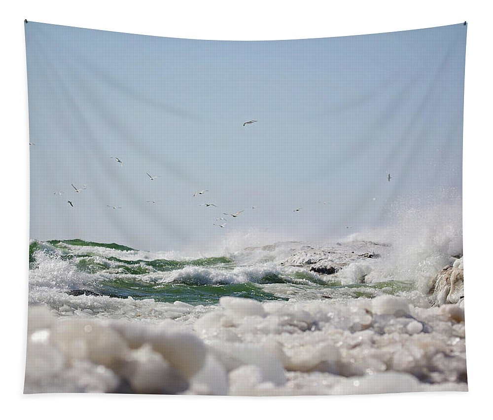 Winter Tapestry featuring the photograph 7170 by Genna Card
