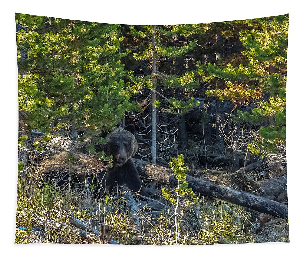 #791 Tapestry featuring the photograph 791 In The Forest by Yeates Photography