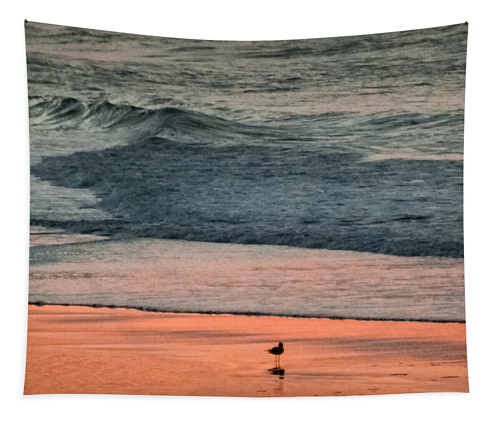 Beaches Tapestry featuring the photograph A Bird's Eye View by Karen Wiles