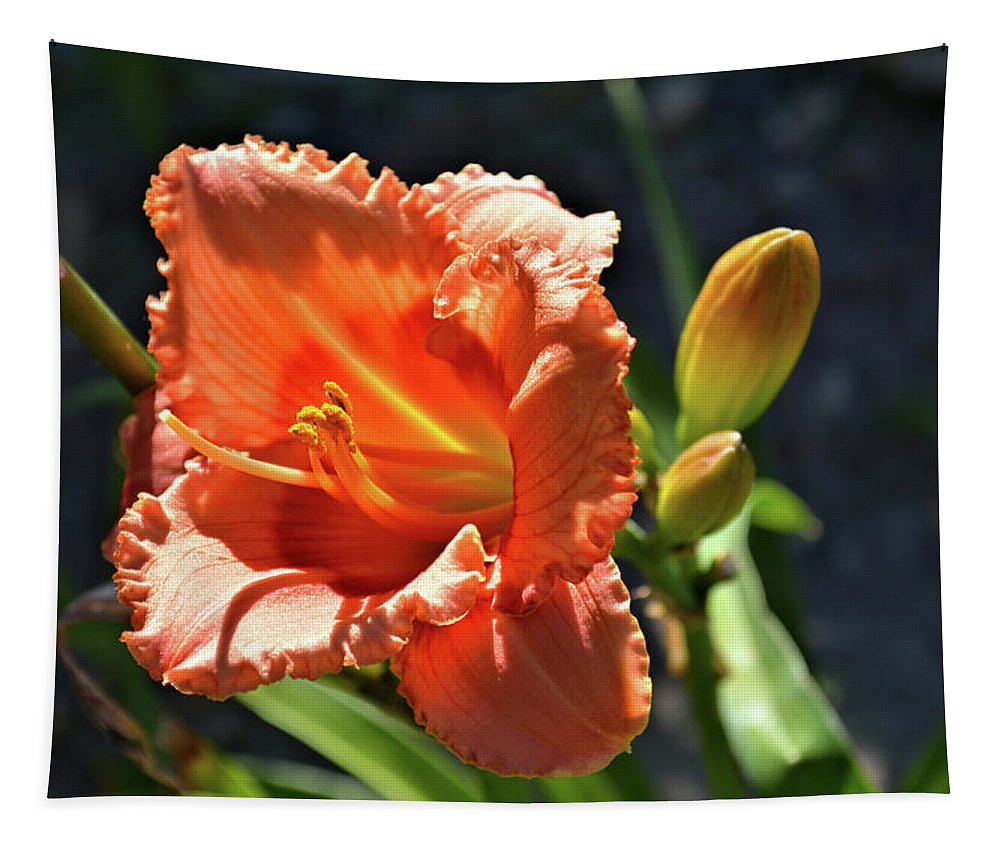 Lilly Tapestry featuring the photograph A Day In The Spotlight by Bonfire Photography