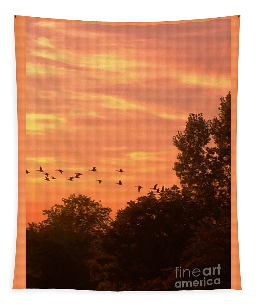 Sun Tapestry featuring the photograph A Different Approach To Sunset by Debra Lynch