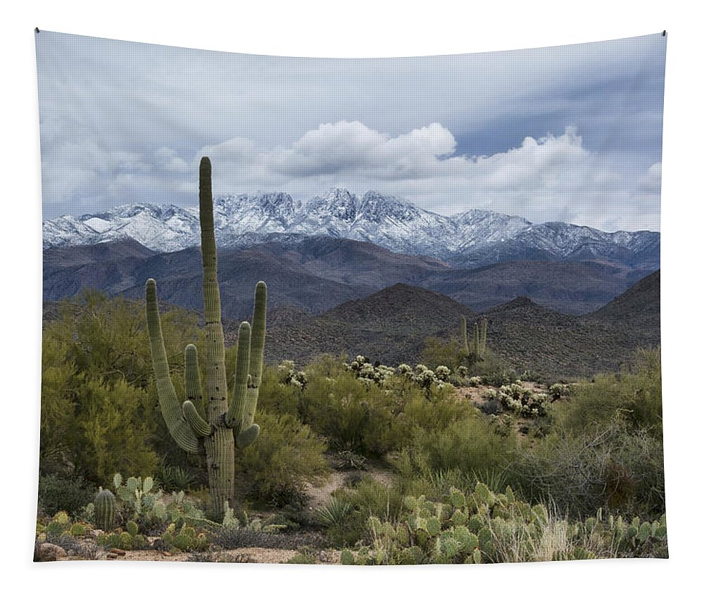 Arizona Tapestry featuring the photograph A Dusting Of Snow In The Sonoran Desert by Saija Lehtonen