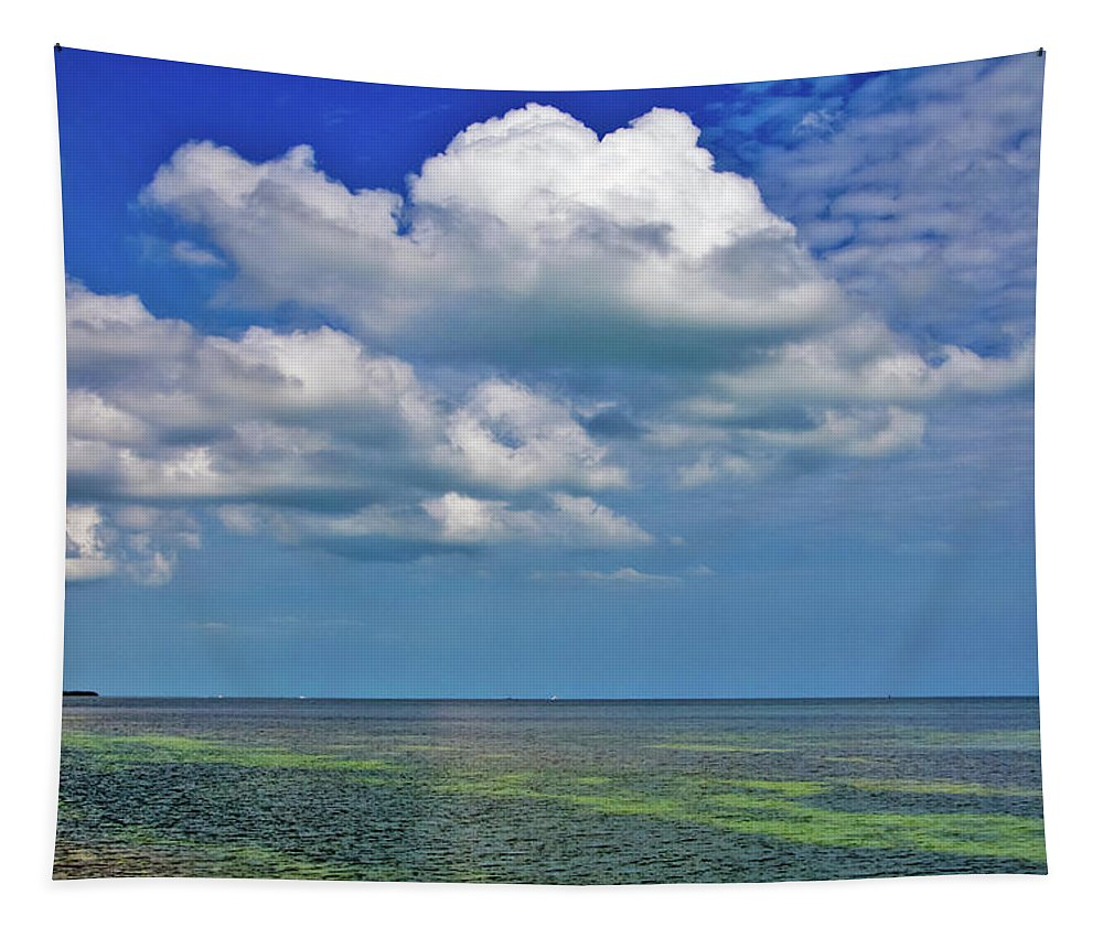 Blue Tapestry featuring the photograph A Few Clouds In Keywest by Bob Slitzan