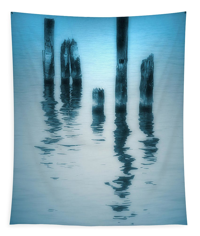 Blue Tapestry featuring the photograph A Fleeting Blue by Tara Turner