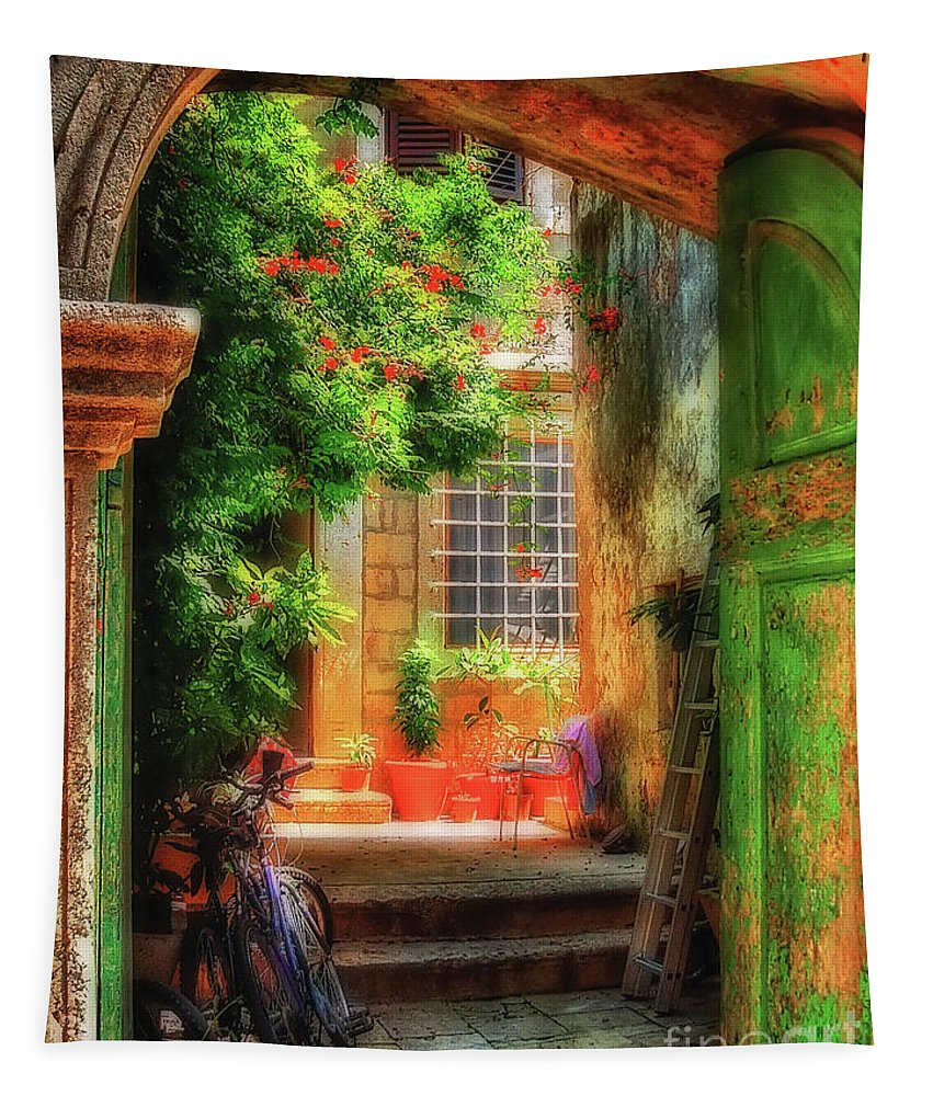 Doorway Tapestry featuring the photograph A Glimpse by Lois Bryan