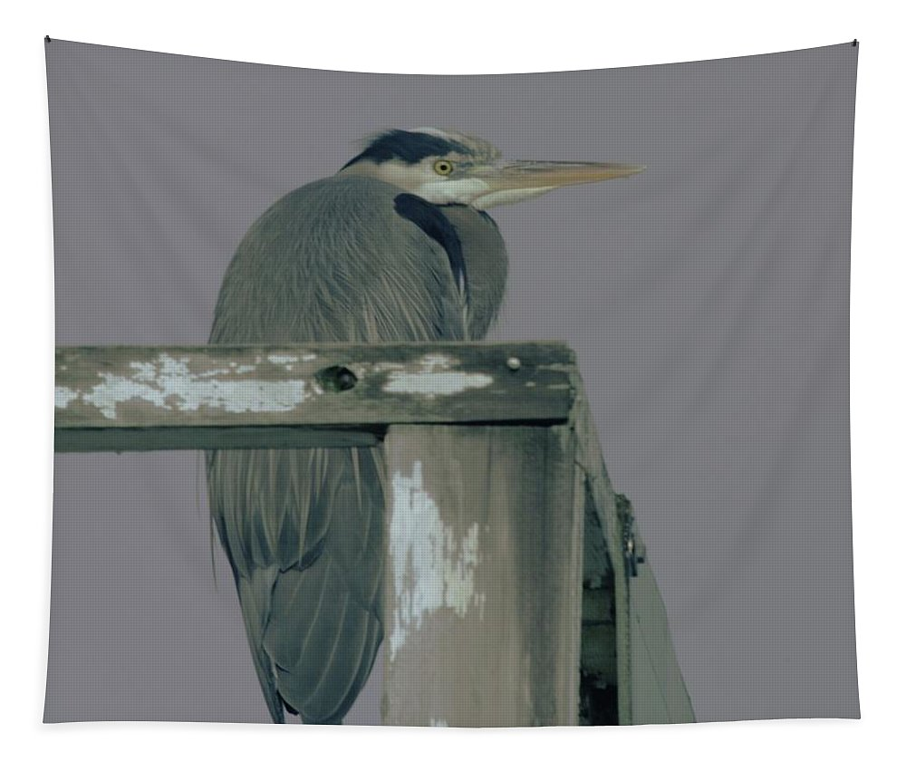 Herons Tapestry featuring the photograph A Heron On Watch by Jeff Swan